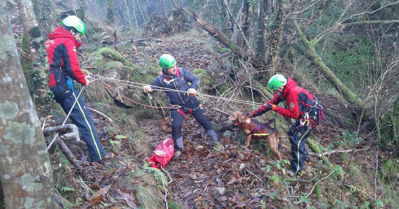 La Stazione di Querceta del Soccorso Alpino Toscano intervenuta su due cani caduti in un torrente in piena presso Farnocchia